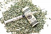 Syringe And Money