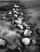 foto of stepping stones  - Stepping stones with moss creating a bridge through the water in black and white - JPG