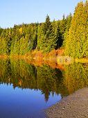 Lost Lake, Whistler