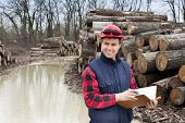 foto of lumber  - Young lumber engineer standing with notebook beside cut trunk stock