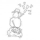 lamb Doodle