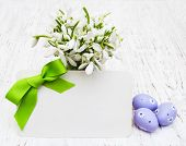 Snowdrops, Easter Eggs And Greeting Card