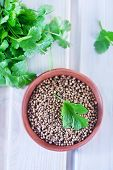 pic of garam masala  - coriander in bowl and on a table - JPG