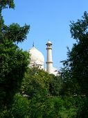 stock photo of mausoleum  - Original view of the Taj Mahal mausoleum with dome and minaret tower framed by vegetation from the surrounding park - JPG