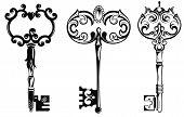 picture of skeleton key  - Decorative vector key - JPG