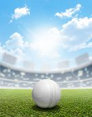 stock photo of cricket ball  - A cricket stadium with a white leather cricket ball on an unmarked green grass pitch in the daytime under a blue sky - JPG