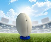 Постер, плакат: Rugby Stadium And Ball