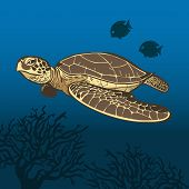 stock photo of sea-turtles  - Funny cartoon sea turtle in the sea - JPG