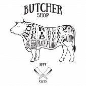image of beef shank  - Butcher cuts scheme of beef - JPG