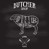 foto of lamb shanks  - Butcher cuts scheme of lamb - JPG
