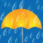 foto of raindrops  - Yellow umbrella and raindrops - JPG