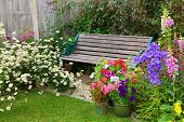 stock photo of digitalis  - Cottage garden with wooden bench and flowers in containers - JPG
