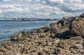 stock photo of puffy  - White puffy clouds hover over the Port of Seattle - JPG