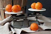 Classic still life of vintage kitchen scales with clementine oranges.  Antique fruit basket and hand