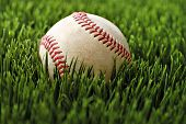 Baseball in grass.  Macro with extremely shallow dof.  Selective focus on stitching.