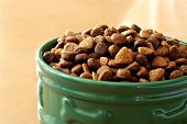 Sunlit bowl of healthy dog food on wood floor.  Macro with shallow dof.