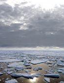 Arctic sea landscape