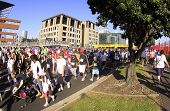 Fun Run and Walk start line