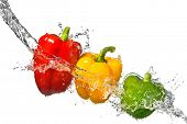 red, yellow and green pepper with water splash isolated on white