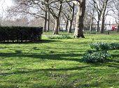 London Hyde Park March