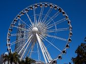 stock photo of ferris-wheel  - A large white Ferris Wheel with a skyscraper in the background is highlighted against a blue sky - JPG