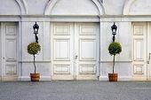 Door with plants
