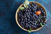 Bowl with freshly picked homegrown aronia berries. Aronia, commonly known as the chokeberry, with le poster