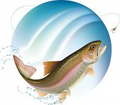 stock photo of spawn  - Trout jumping for the bait with water sprays around - JPG