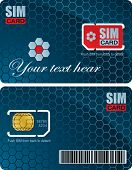 Sim card with carrier vector template