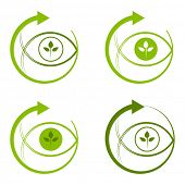 Environmentally conscious eye logo.