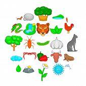 Domesticated Animal Icons Set. Cartoon Set Of 25 Domesticated Animal Vector Icons For Web Isolated O poster