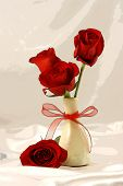 Red Roses In Curved Vase