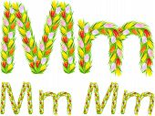 Vector Font Type Letter M Made From Flower Tulip