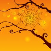 Spooky spider web hanging on tree in curvy style with cheerful background.  Blank space at the botto