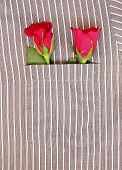 Couple Rose in pocket