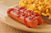 Hot Dogs Close Up