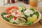 Tunafish Pita Sandwiches With Cottage Cheese