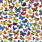 texture of butterflies