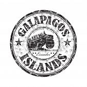 Galapagos Islands rubber stamp