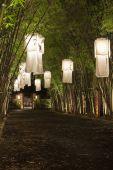 Asian Lanterns.