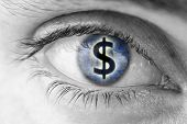 stock photo of  greed  - Dollar sign in human pupil - JPG