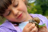 Girl And Garden Snail