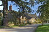 pic of english cottage garden  - The tiny village of Hidcote Bartrim near Hidcote Gardens - JPG