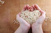 close up of hand holding brown rice