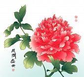 Vector Ink Painting of Chinese Peony. Translation of Calligraphy: The Blossom of Flourishing Age. Translation of Red Stamps: Good Fortune.