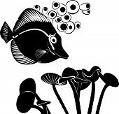 stock photo of butterfly fish  - sea butterfly fish coral fish aquarium fish butterfly fish - JPG