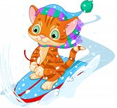 Cute kitten sledding downhill winter snow mountain