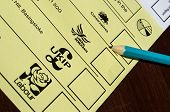 Local Election Ballot Paper
