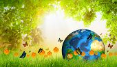 Green Earth on Fresh spring green grass with green leaf and butterfly (Elements of this image furnished by NASA)