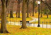 Washington DC Memorial Park